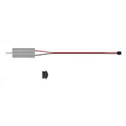 Motor Parrot (Clockwise)