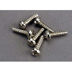 Screws 3x10mm roundhead self-tapping (6)