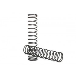 Springs shock (natural finish) (GTX) (1.055 rate) (2)